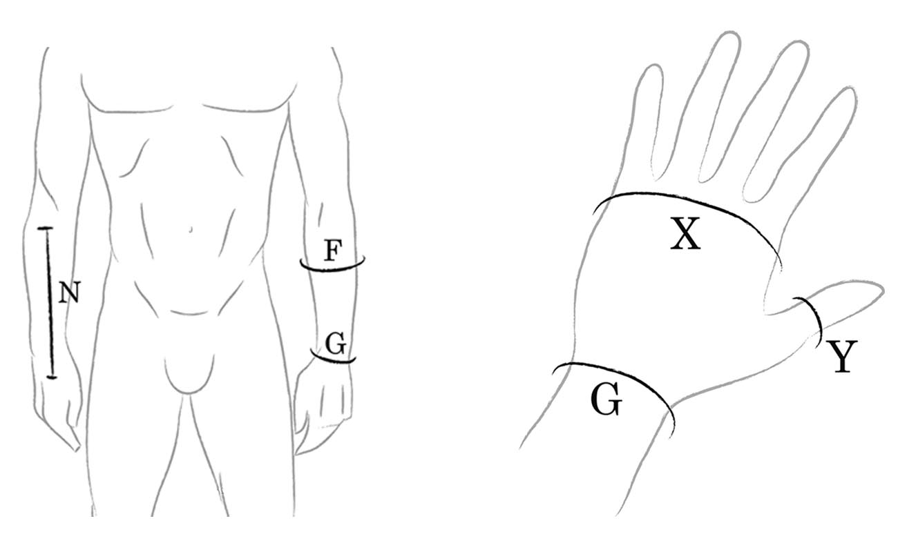 Hand Measurements